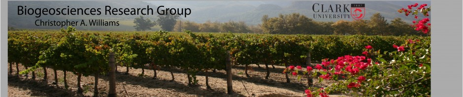 vineyards_banner_text