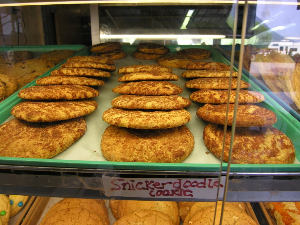 Of course we stopped in Girdwood for the giant snickerdoodles. They are an amazing confection of sugar and warm-baked goodness and procuring them is an essential stop along the way.