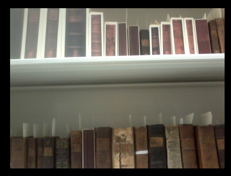 Mather Library on Shelves