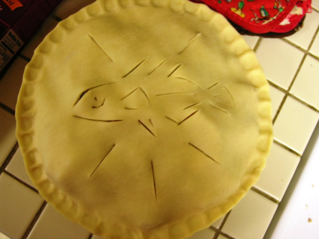 Other fun things we do: a stickleback pie we made for Kat and Jeff's arrival! I promise we didn't cook any fish. It was peaches and blueberries.