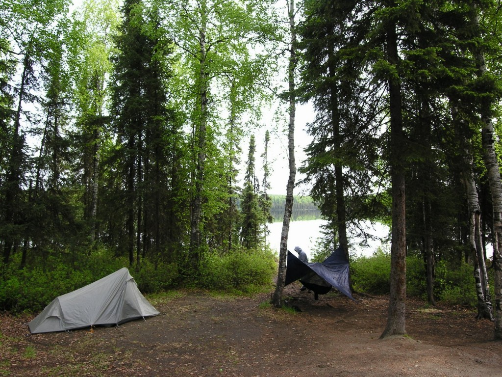 Our campsite at South Rolly. Lauren has a hammock-tent that was interesting to try and figure out. She set it up a little more successfully when we got to Talkeetna. I was smart and decided to sleep in the tent. Haha.