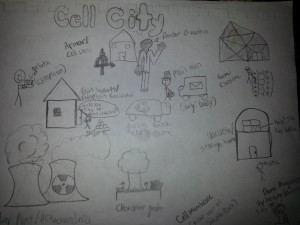 Performance assessments student work samples zach fellows the cell city was my favorite part of third quarter because i was really proud of what i made donna from 3rd quarter reflection sheets ccuart Images
